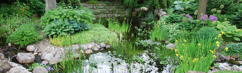 jardin d 39 eau am nagement paysager avec bassin et cascade jardins aquadesign. Black Bedroom Furniture Sets. Home Design Ideas