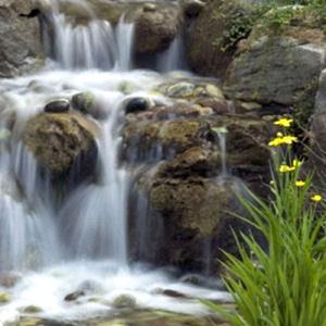 © Jardins Aquadesign
